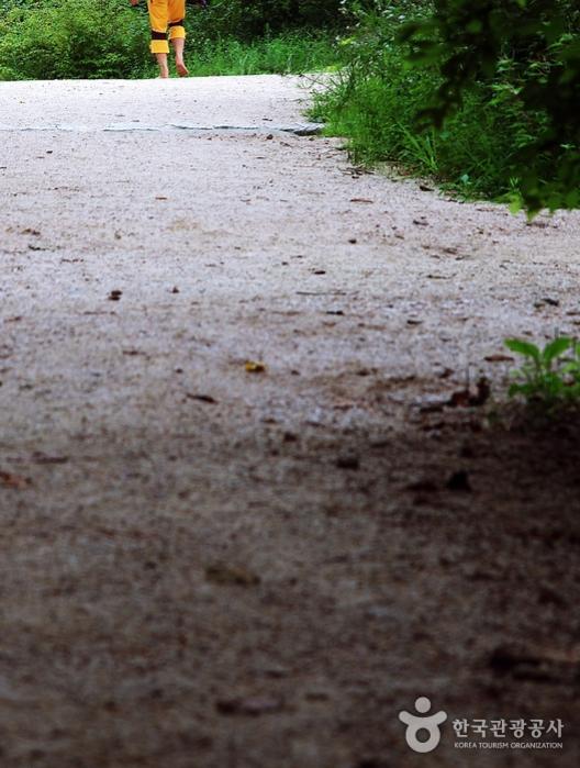 우이령길을 맨발로 걷는 사람