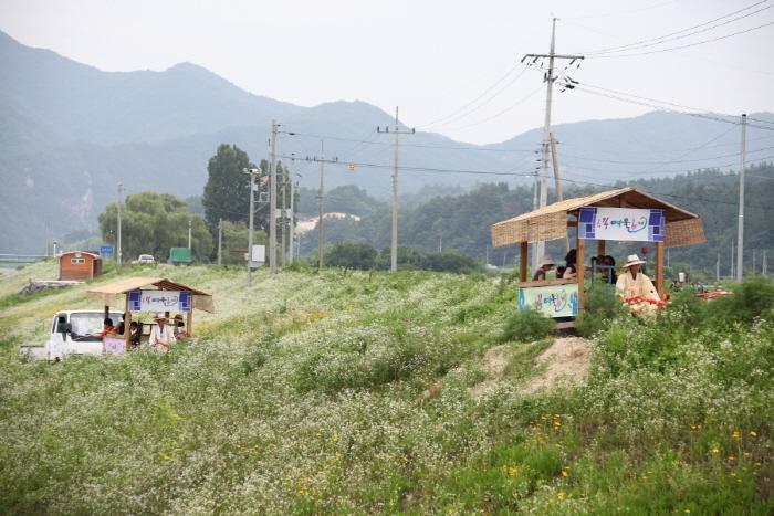 錦江ヨウル祭り(금강여울축제)