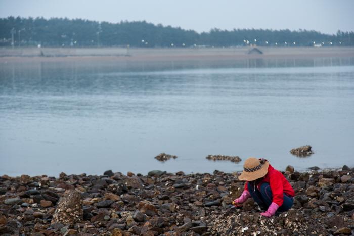 자그마한 해변에 재미 한가득, 태안 어은돌 사진