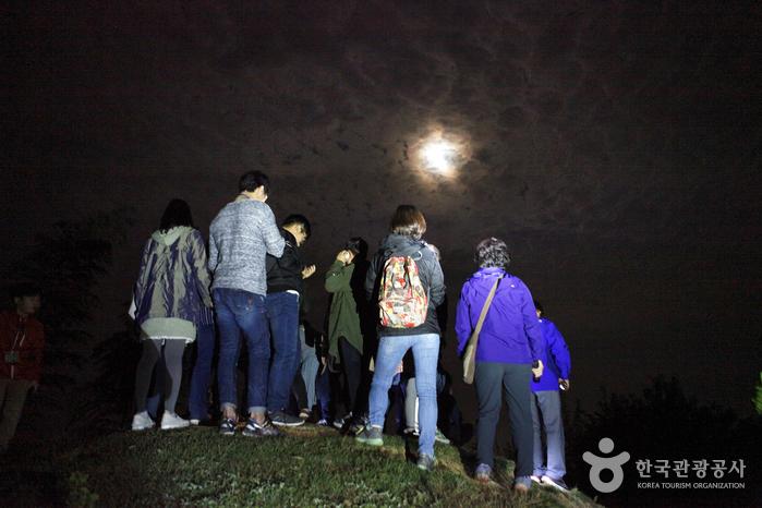구수한 가을밤에 달곰한 달빛 한 조각, 담양 달빛여행