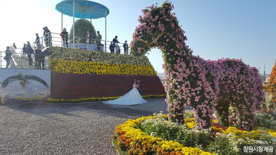 축제장 포토존에서 웨딩사진을 촬영하는 사람들