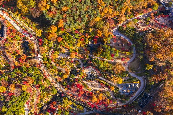가을 화담숲 단풍 축제 2019