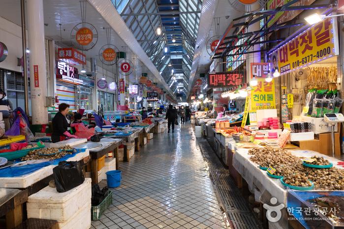 束草観光水産市場(旧中央市場)(속초관광수산시장(구 중앙시장))