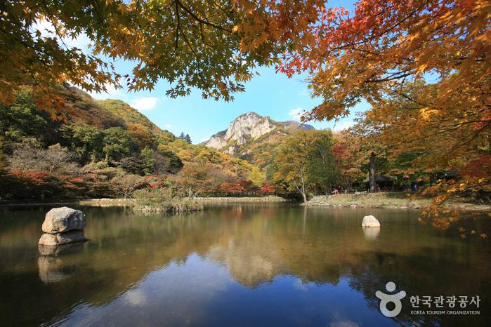 깊어가는 가을을 쫓아 떠나는 여행, 전남 장성 사진