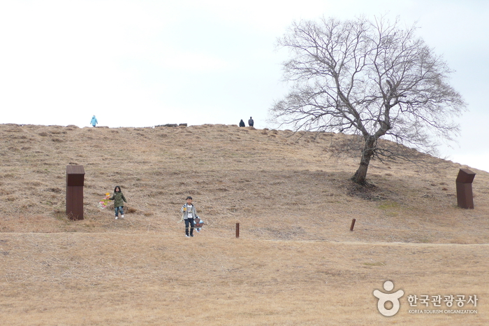 Daeseong-dong Tombs Museum (대성동고분박물관)