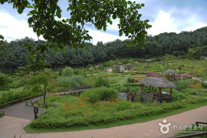 龍仁農村主題公園(용인농촌테마파크)