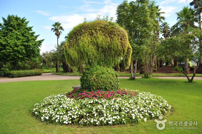 Botanischer Garten Yeomiji (여미지식물원)
