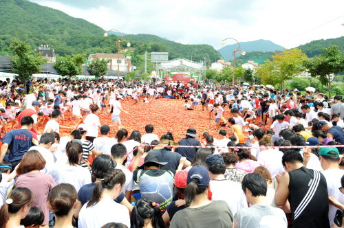 Hwacheon Tomato Festival (화천토마토축제)