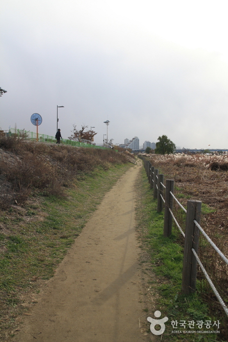 Amsa Ecological Park (암사생태공원)