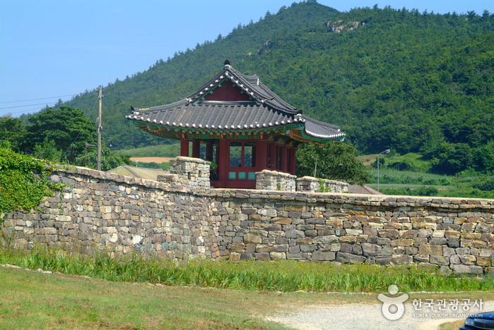 Jindo Island (진도)
