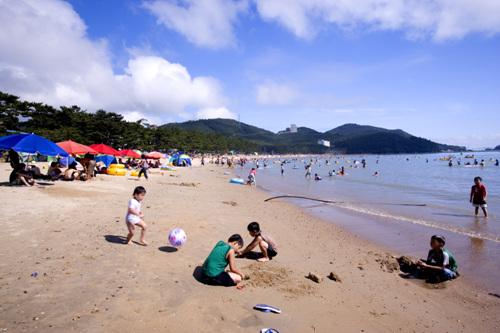 Пляж Сонхо (송호해수욕장)28