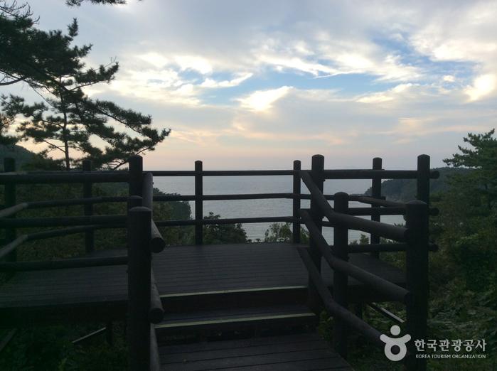 泰安海岸国立公園(태안해안국립공원)