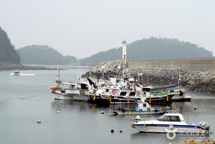 Festival für Meeresprodukte am Hafen Mohanghang (태안 모항항 수산물(해삼) 축제)