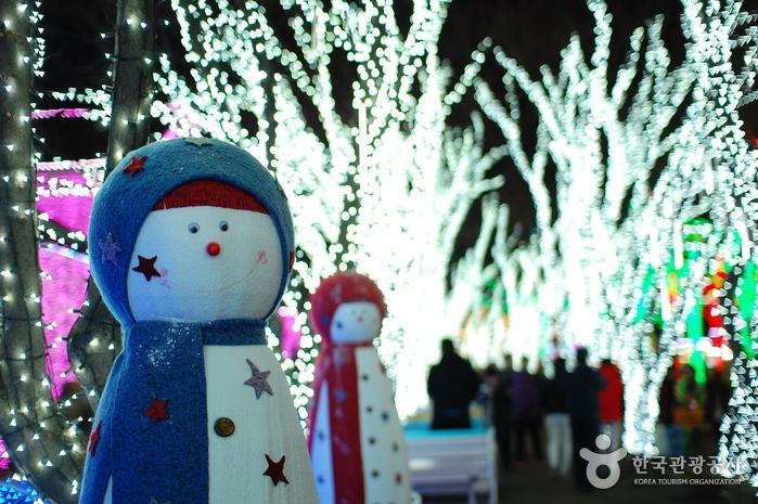 어둠이 내리면 산타가 나타난다! 청도 프로방스 포토랜드