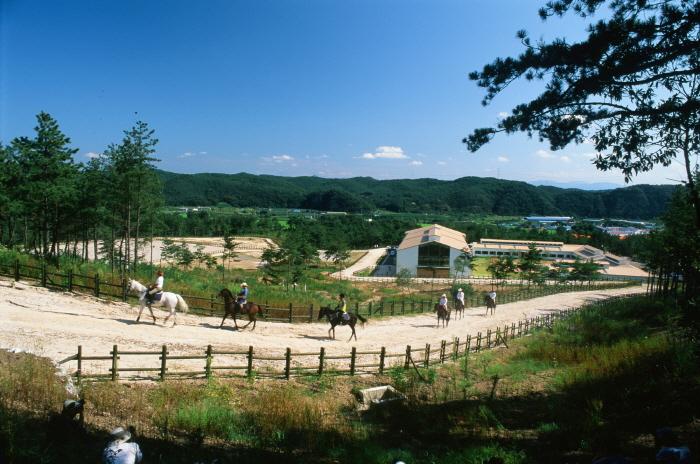운주산 승마자연휴양림에서 승마를 즐기고 있는 관광객들