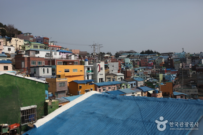 Busan Gamcheon Culture Village (부산 감천문화마을)