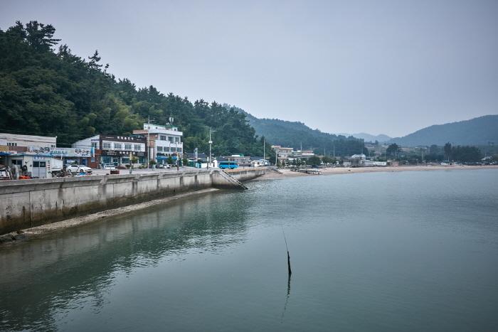 장흥 키조개마을