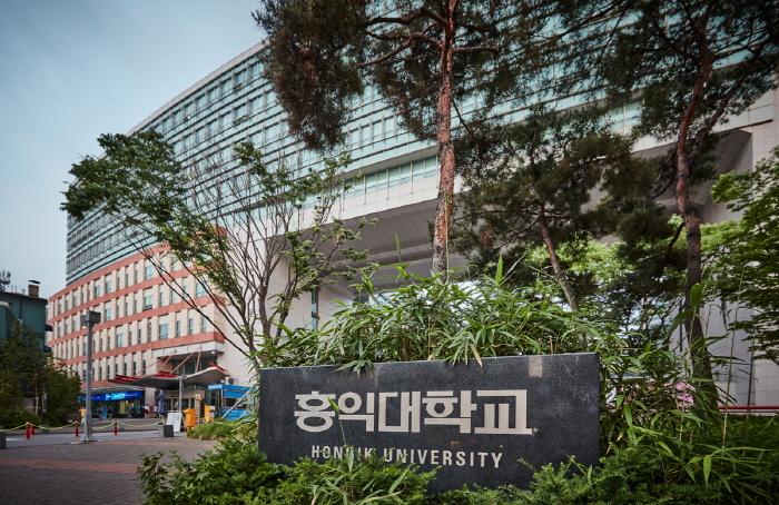 Хондэ (район университета Хоник) (홍대)4