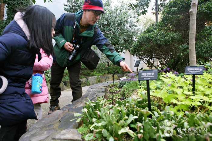 '재미있는 식물관'에는 식충식물 파리지옥과 움직이는 식물 미모사 등 신기한 식물이 많다