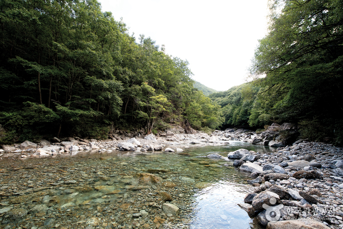ペムサコル渓谷(뱀사골계곡)