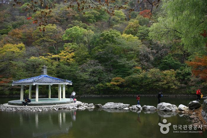 Uhwajeong Pavilion (우화정(내장산))