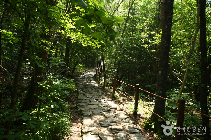 Seoraksan National Park (NaeSeorak) ( - )