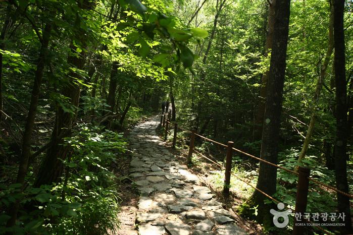 雪嶽山國立公園(內雪嶽)(설악산국립공원(내설악))6
