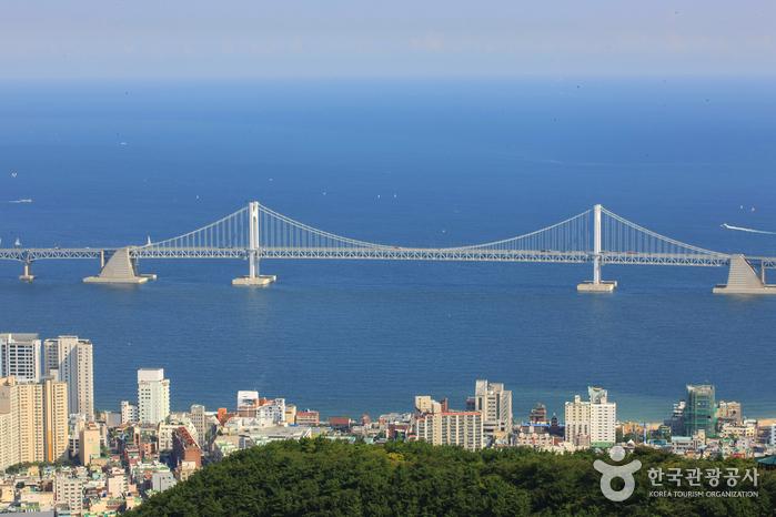 釜山 広安大橋(부산광안대교)