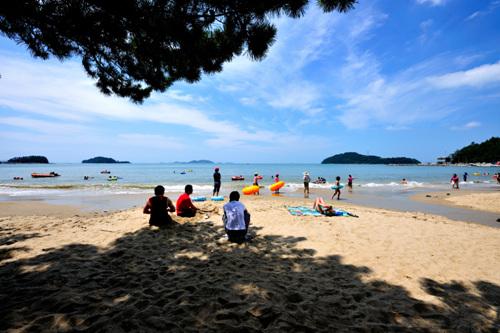 Пляж Сонхо (송호해수욕장)27
