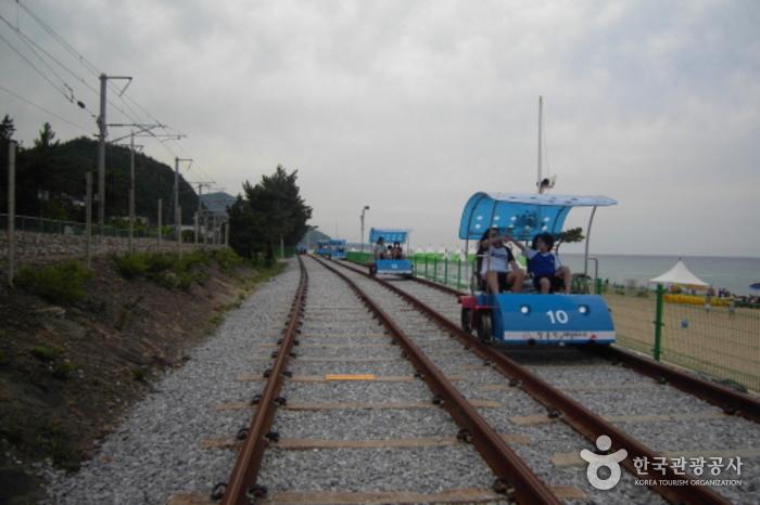 正东津铁路自行车(정동진 레일바이크)
