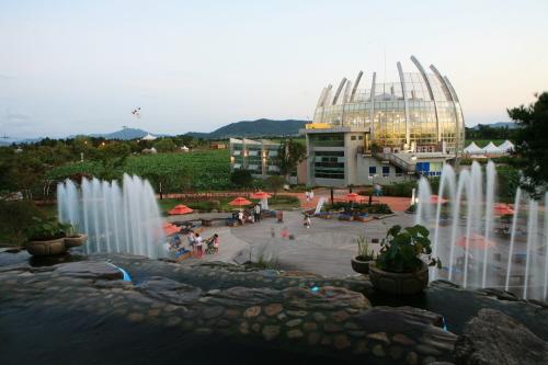 Muan White Lotus Festival (무안연꽃축제)