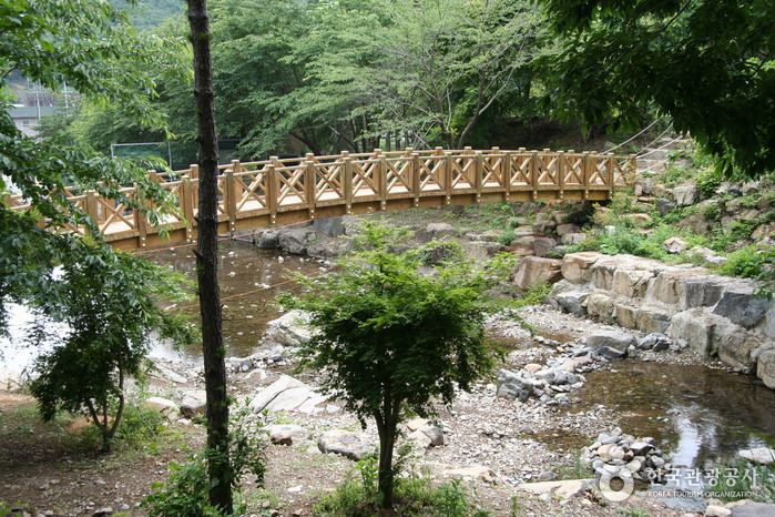 Jeamsan Recreational Forest (제암산자연휴양림)
