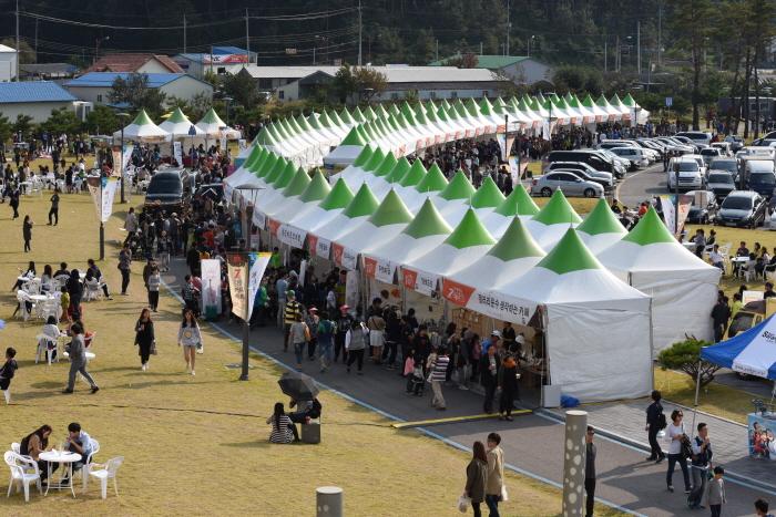 Gangneung Coffee Festival (강릉 커피축제)