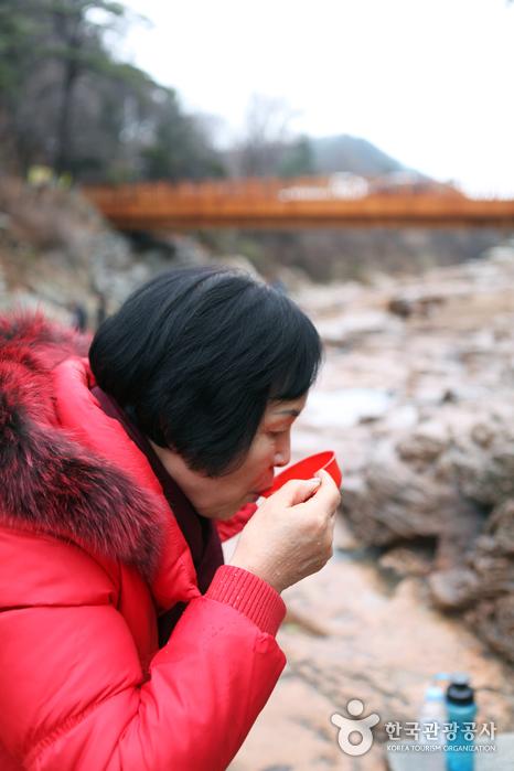 Osaek Mineral Spring (오색약수터)