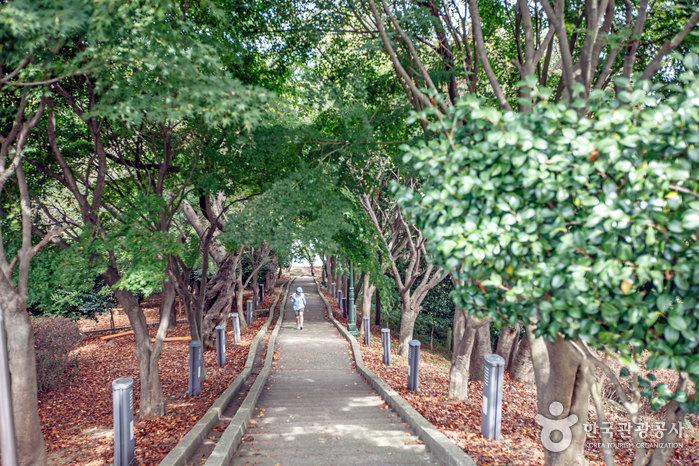 Parc Wolmyeong (월명공원)
