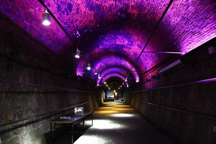 Винный туннель Чхондо (청도 와인터널)19