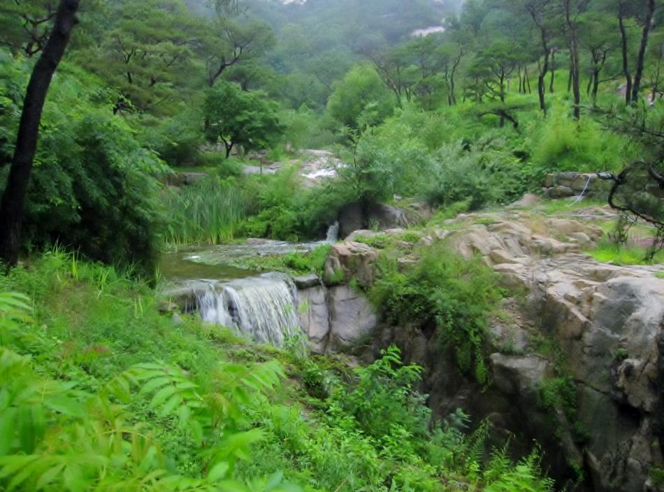 비 오는 날 수성동계곡 _사진 제공 서촌문화관광해설사 이정연
