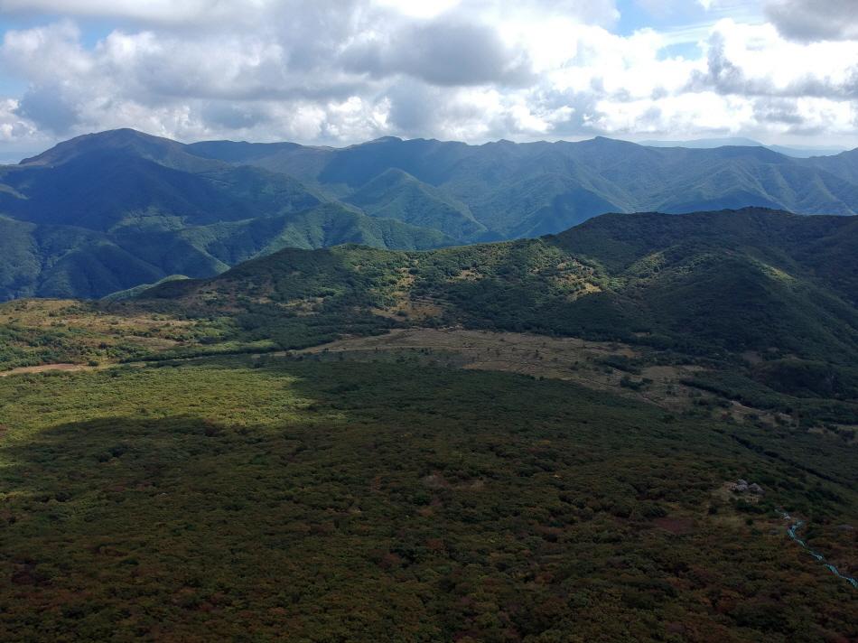 사자평습지는 국내 최대 산지 습지다.
