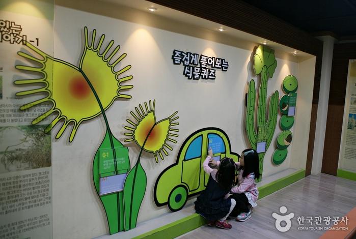 식물퀴즈 참여하는 아이