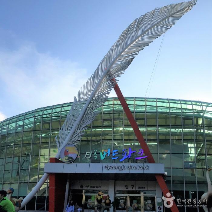 Парк птиц в Кёнчжу (경주 버드파크)2