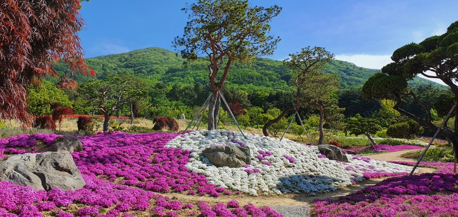 가산수피아 '봄의 정원'