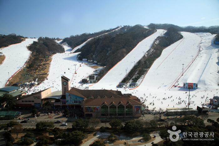 维瓦尔第公园滑雪场(비발디파크 스키월드)
