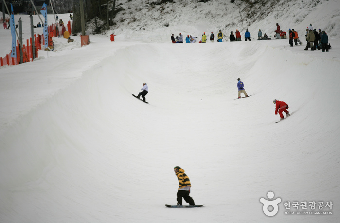 Phoenix Park Ski Resort (보광휘닉스파크 스키장)