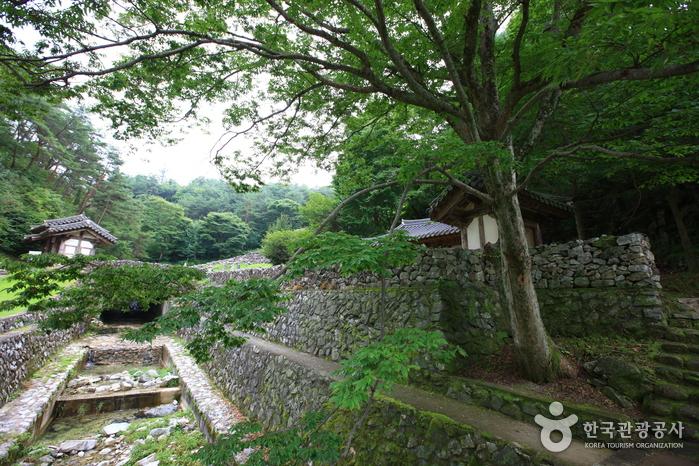 Гробница короля Кухёна (산청 전 구형왕릉)10