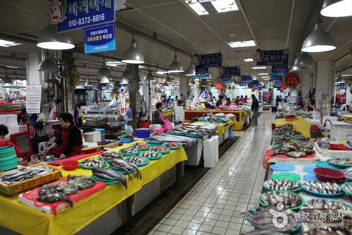 Jumunjin Fischmarkt (강릉 주문진 수산 시장)