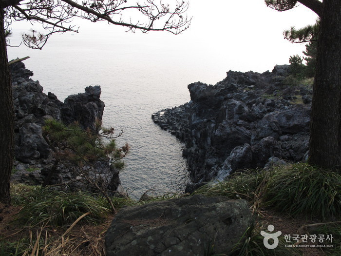Jungmun Daepo Coast Jusangjeolli Cliff (())