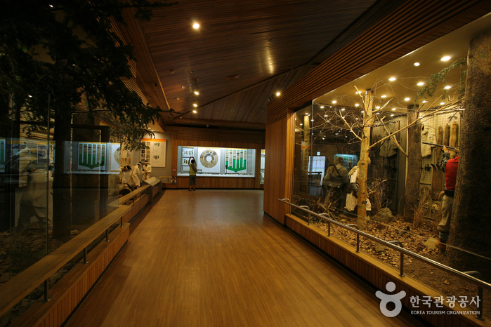 Korea National Arboretum and Forest Museum (국립수목원[광릉숲])