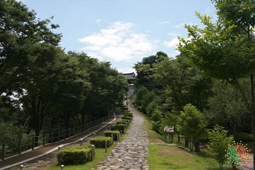 Munui Cultural Properties Site (문의문화재단지)