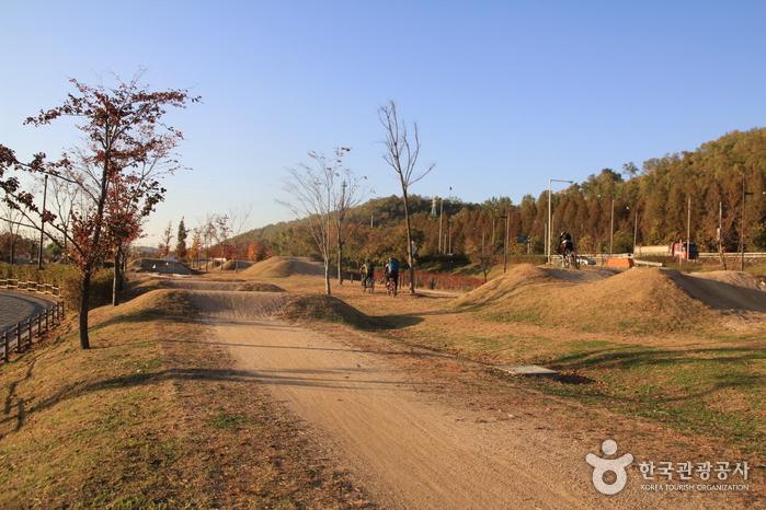 蘭芝漢江公園MTB練習場(난지한강공원 MTB코스장)