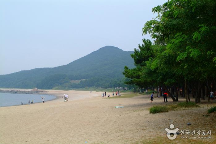 Silmi (Keunmuri) Beach (실미해수욕장)